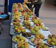 Fête des pommes32